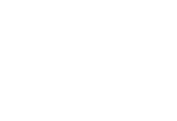 take root tree